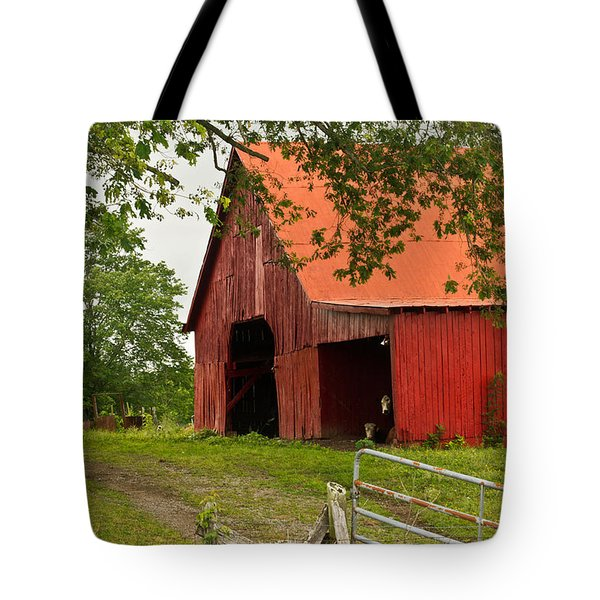 Red Barn with Orange Roof 1 Tote Bag by Douglas Barnett