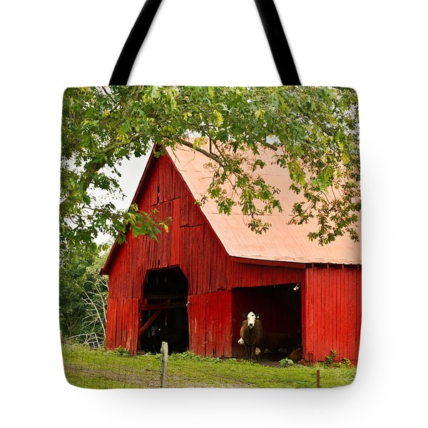 Red Barn with Pink Roof Tote Bag by Douglas Barnett