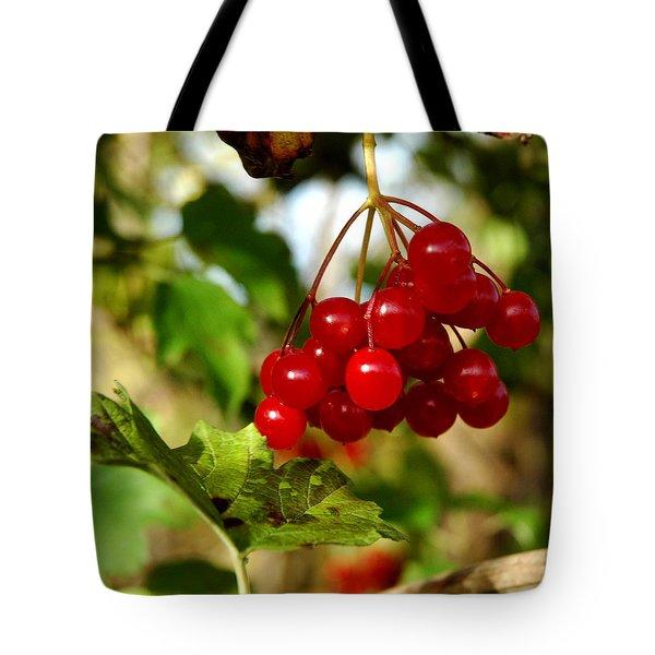 Red Bunch Tote Bag by LeeAnn McLaneGoetz McLaneGoetzStudioLLCcom
