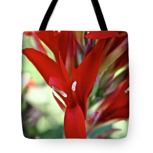 Red Canna Tote Bag by Susan Herber