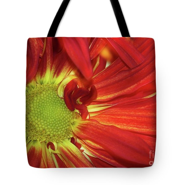 Red Daisy Too Tote Bag by Sabrina L Ryan