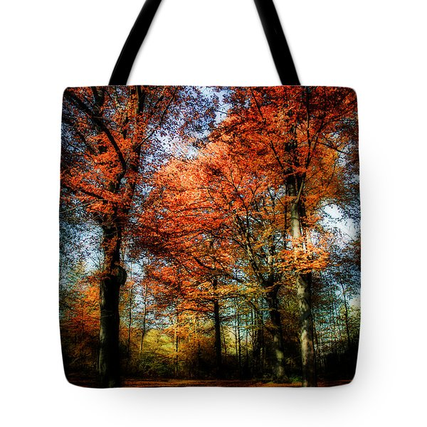 Red Fall Tote Bag by Hannes Cmarits