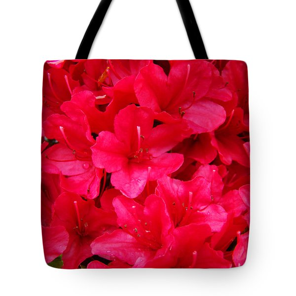 Red Floral art prints Rhododendron Flowers Rhodies Tote Bag by Baslee Troutman Fine Art Prints