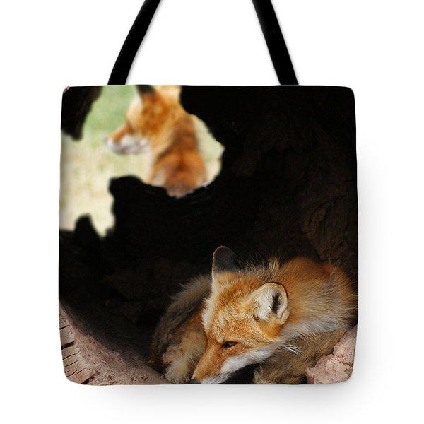 Red Fox Dreaming Tote Bag by Ernie Echols