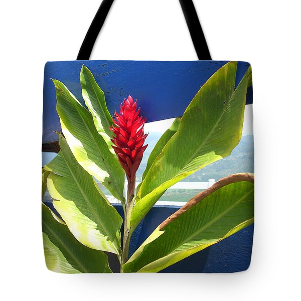 Red Ginger Tote Bag by Randi Shenkman