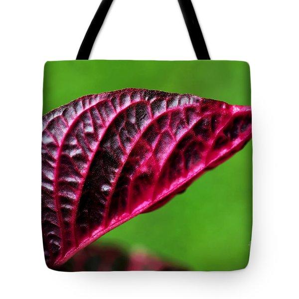 Red Leaf Tote Bag by Kaye Menner
