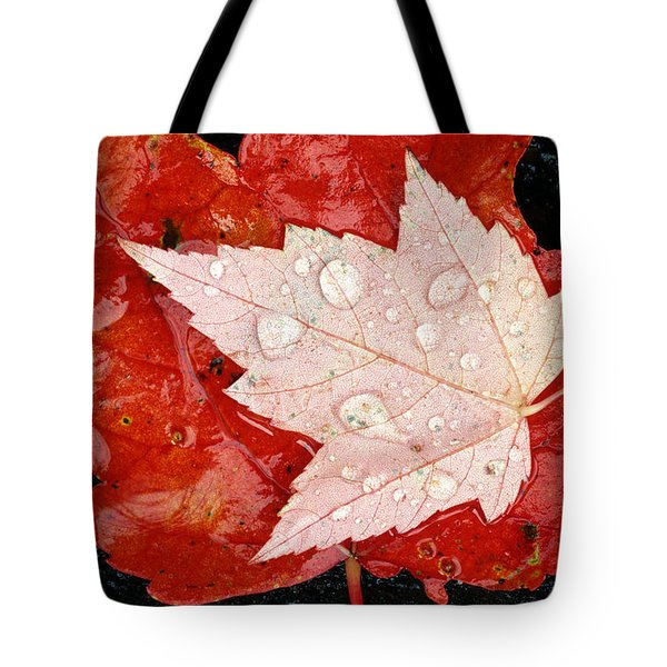 Red Maple Leaves Tote Bag by Mike Grandmailson