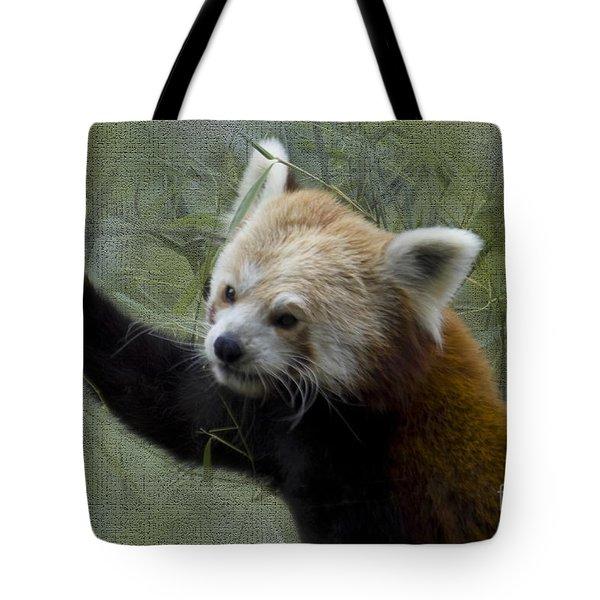 Red Panda Tote Bag by Heiko Koehrer-Wagner
