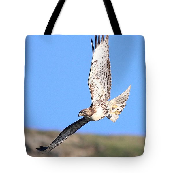 Red-tailed Hawk . 40d10968 Tote Bag by Wingsdomain Art and Photography