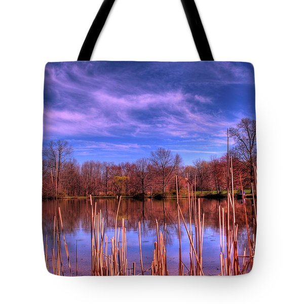 Reeds Tote Bag by Paul Ward