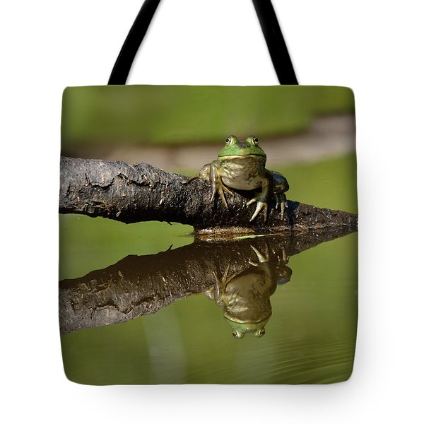 Reflecktafrog Tote Bag by Susan Capuano