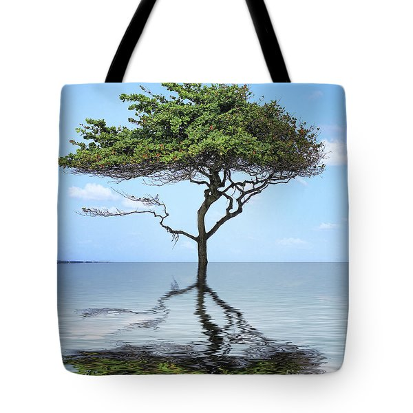 Reflecting Tote Bag by Cheryl Young