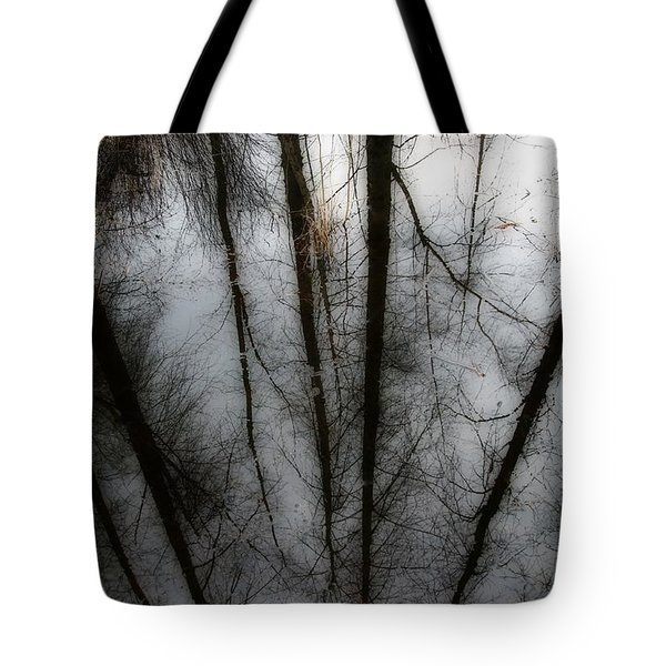 Reflecting On A Winter Day Tote Bag by Winston Rockwell