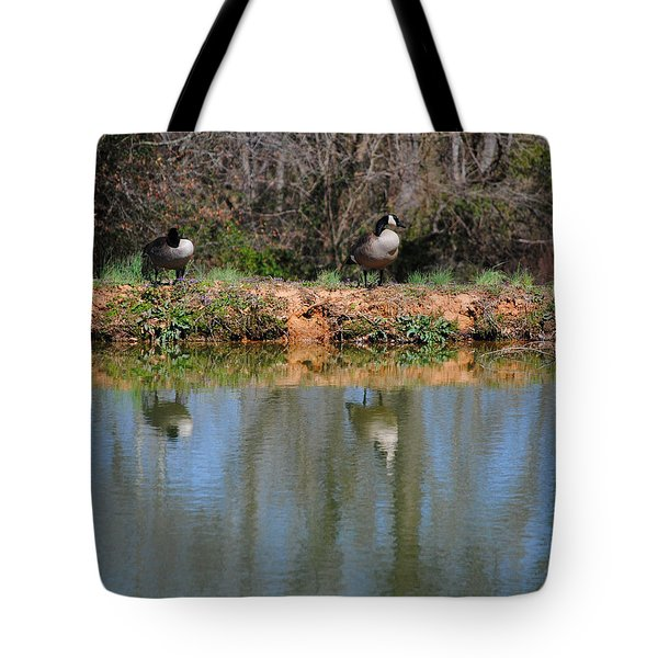 Reflections Tote Bag by Jai Johnson
