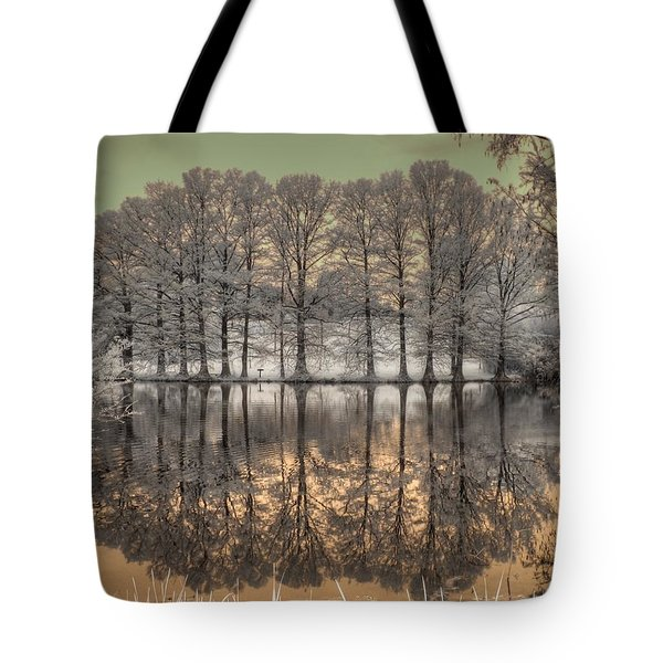 Reflections Tote Bag by Jane Linders