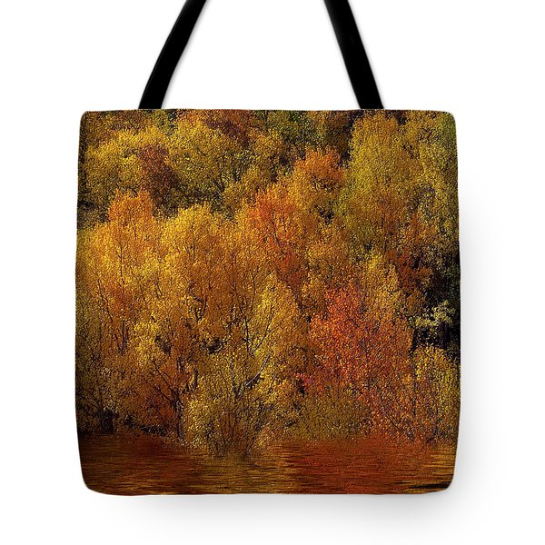 Reflections Of Autumn Tote Bag by Carol Cavalaris