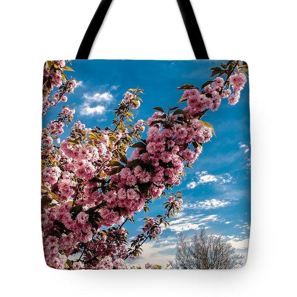 Refreshing Tote Bag by Robert Bales
