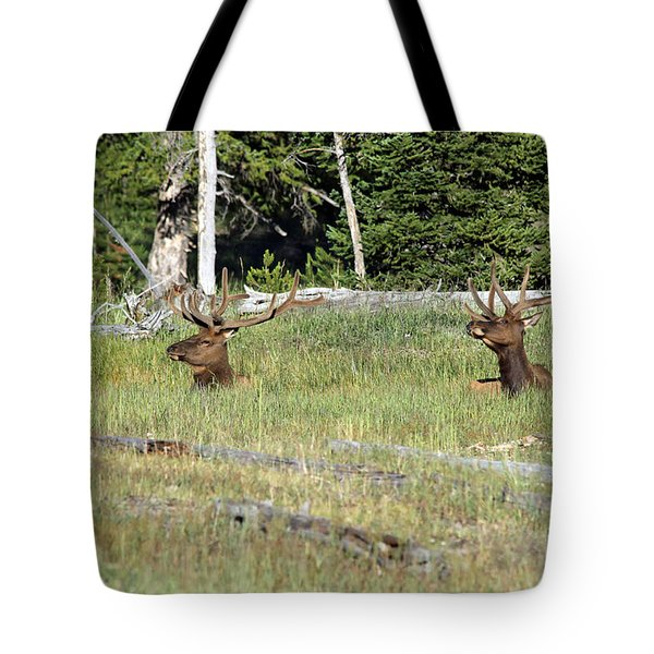Relaxed Elk Tote Bag by Shawn Naranjo
