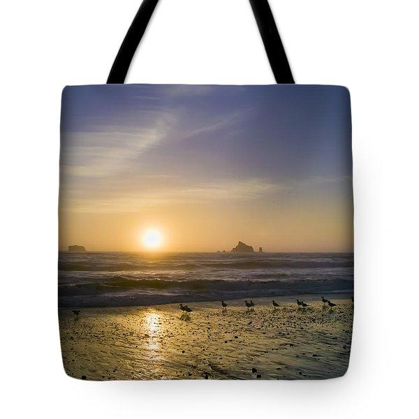 Rialto Beach Sunset Photograph by Patrick M Lynch