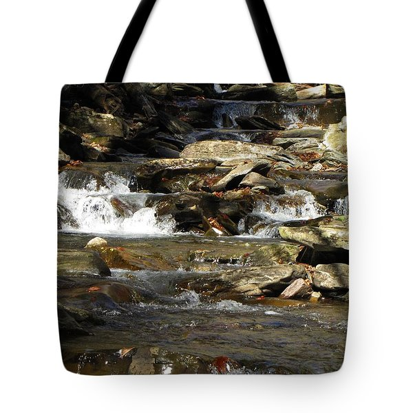 Ricketts Glen Waterfall 3975 Tote Bag by David Dehner