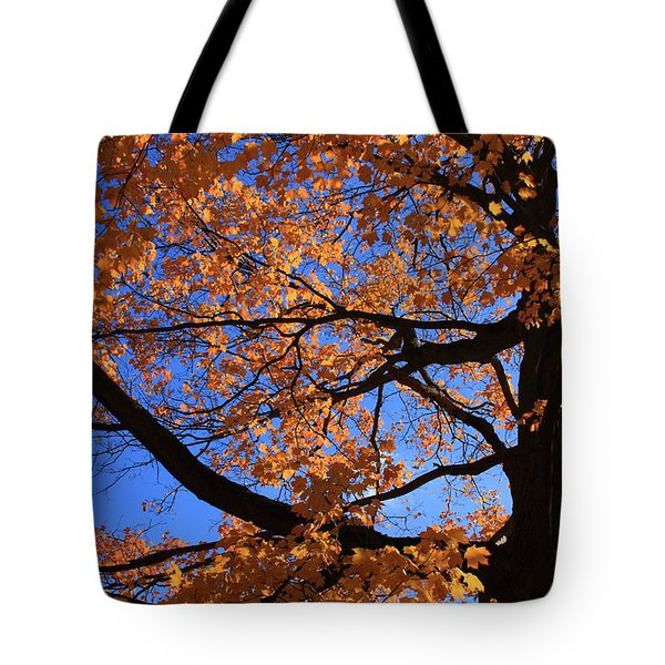 Right Place Right Time Tote Bag by Lyle Hatch