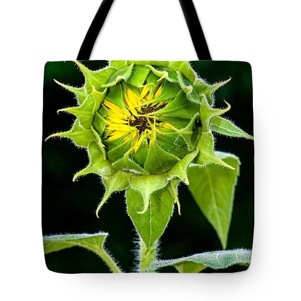 Rising Sun Tote Bag by Christopher Holmes