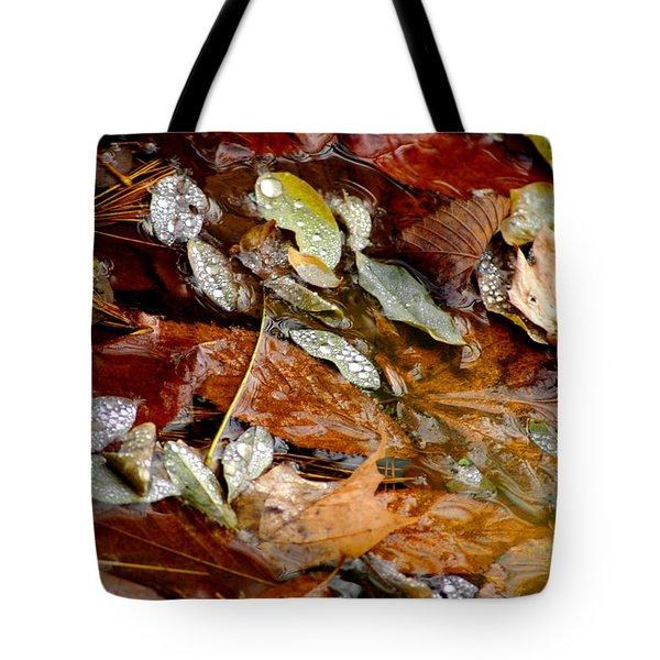 River Leaves Tote Bag by LeeAnn McLaneGoetz McLaneGoetzStudioLLCcom