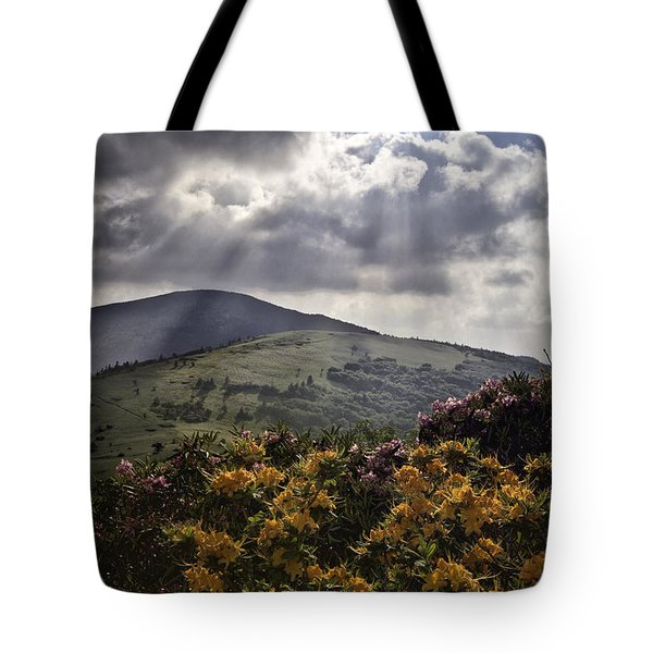 Roan Mountain Afternoon Tote Bag by Rob Travis