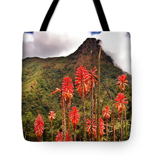 Rocket's Red Glare Tote Bag by Skip Hunt