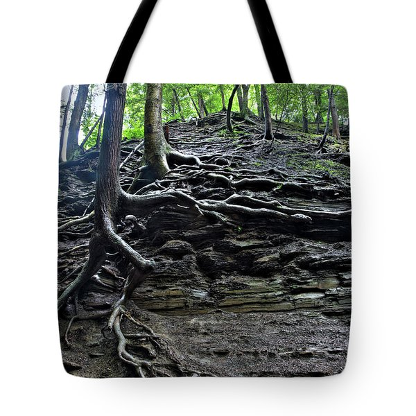 Roots In Shale Tote Bag by Ted Kinsman