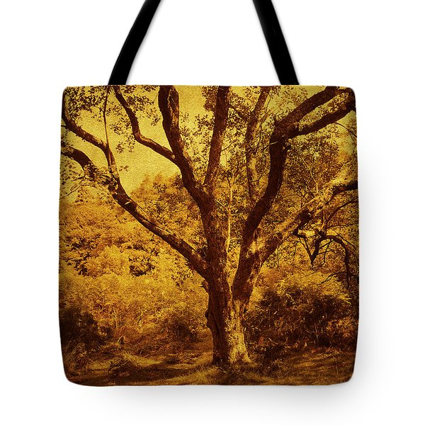 Roots Of Wisdom. Wicklow Hills. Ireland  Tote Bag by Jenny Rainbow