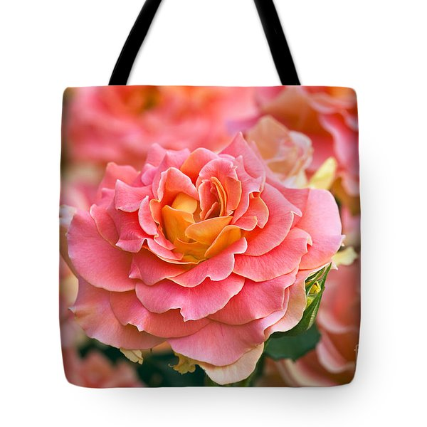 Rosa 'Brass Band' Tote Bag by Alan Detrick and Photo Researchers