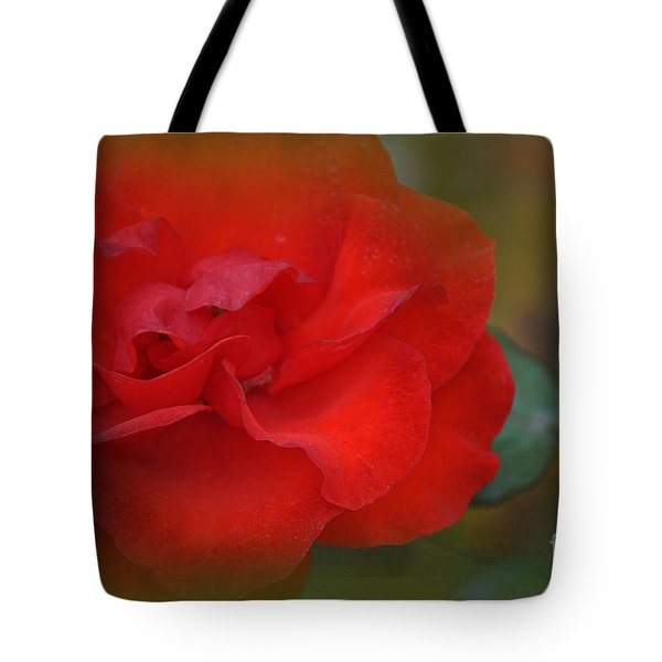 Rose Dream Tote Bag by Mary Machare