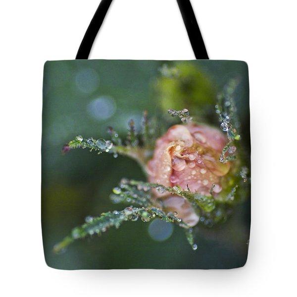 Rose Flower Series 9 Tote Bag by Heiko Koehrer-Wagner