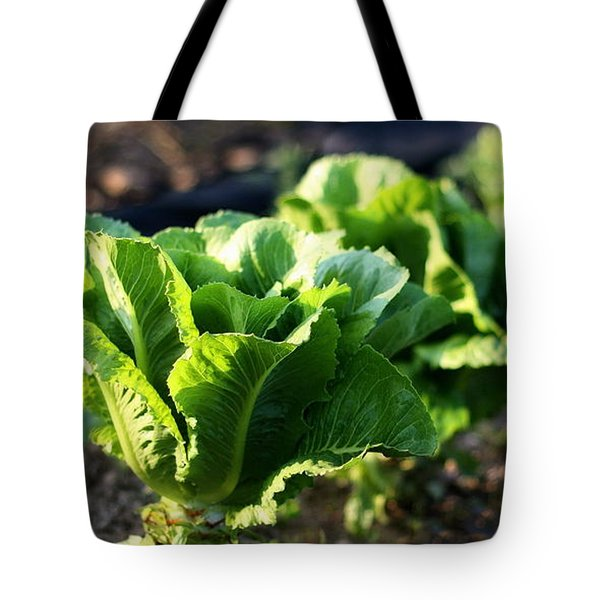 Row Of Romaine Tote Bag by Angela Rath