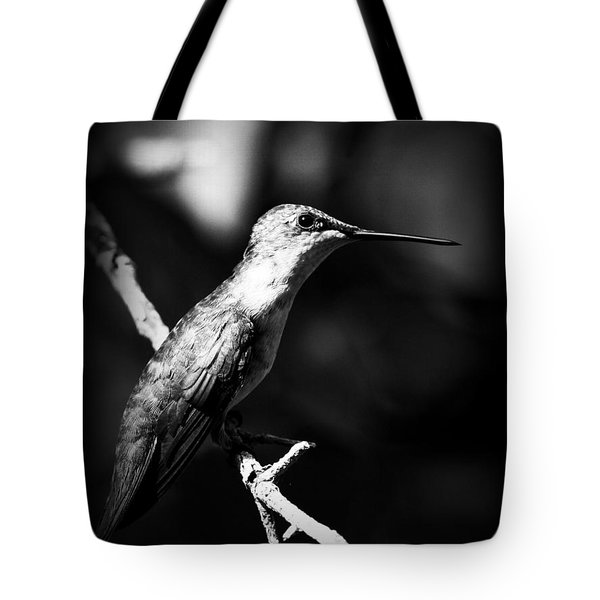 Ruby-throated Hummingbird - Signature Tote Bag by Travis Truelove