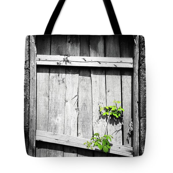 Ruins Tote Bag by Gaspar Avila