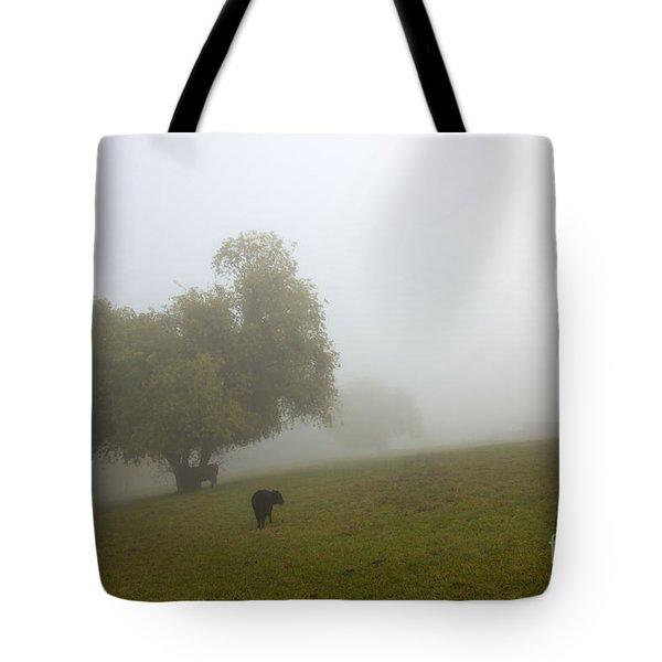 Rural Fog Tote Bag by Mike  Dawson