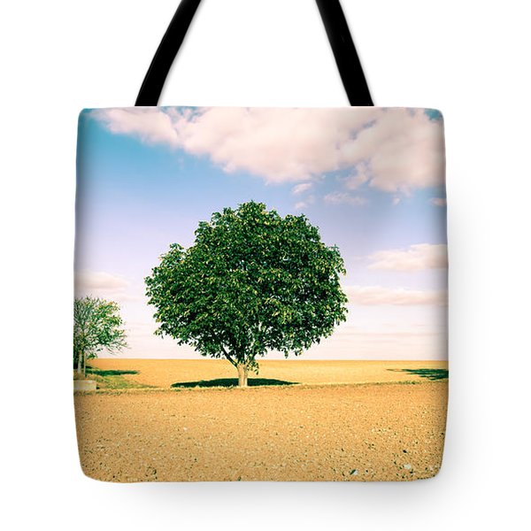 Rural Scene Tote Bag by Tom Gowanlock