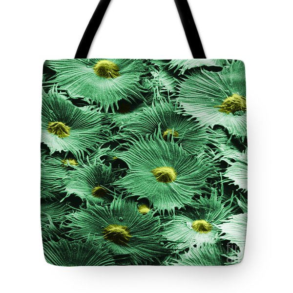 Russian Silverberry Leaf  Tote Bag by Asa Thoresen and Photo Researchers