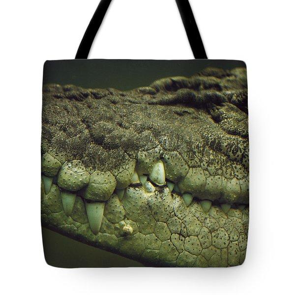 Saltwater Crocodile Teeth Tote Bag by Cyril Ruoso