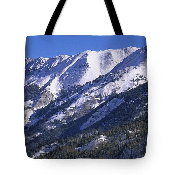 San Juan Mountains Covered In Snow Tote Bag by Tim Fitzharris