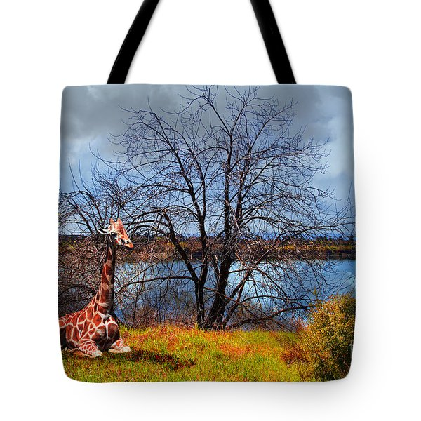 Sanctuary . 7D12636 Tote Bag by Wingsdomain Art and Photography