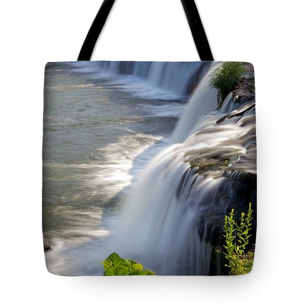 Sandstone Falls Wv Tote Bag by Sean Cupp