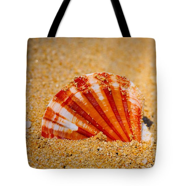 Scallop Shell Tote Bag by Cheryl Young