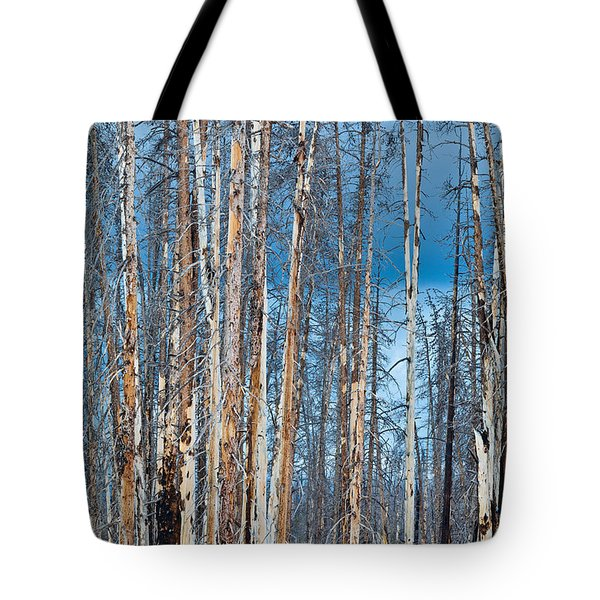 Scarred Pines Yellowstone Tote Bag by Steve Gadomski