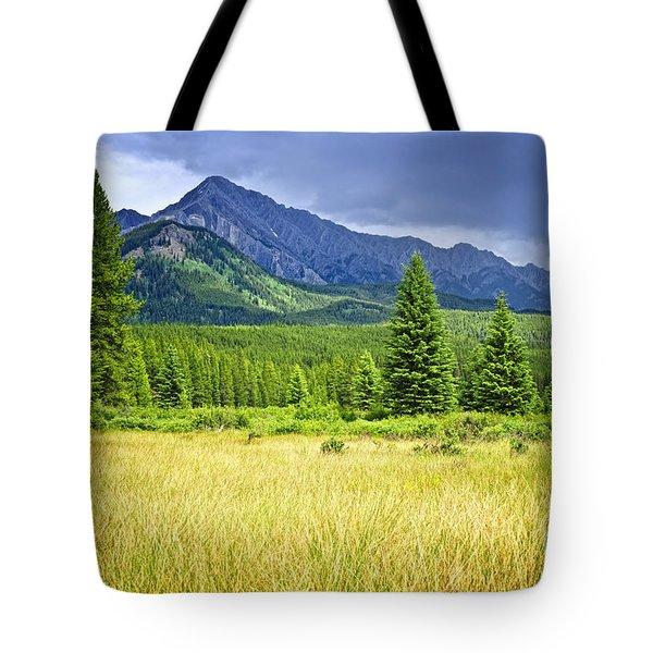 Scenic view in Canadian Rockies Tote Bag by Elena Elisseeva
