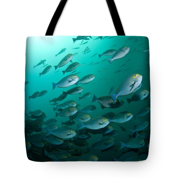 School Of Yellow Masked Surgeonfish Tote Bag by Mathieu Meur