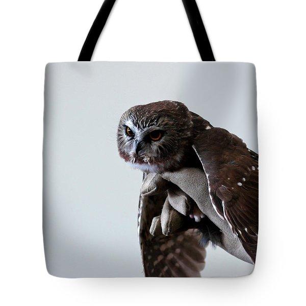 Screech Owl Tote Bag by LeeAnn McLaneGoetz McLaneGoetzStudioLLCcom