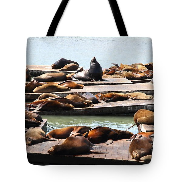 Sea Lions At Pier 39 San Francisco California . 7D14316 Tote Bag by Wingsdomain Art and Photography
